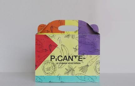 picante food box 1